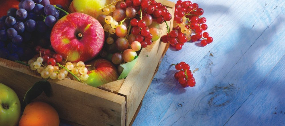 CCTP_fruit_CE_0809aoutsept